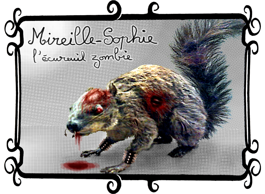 Mireille Sophie, l'écureuil zombie, une petite boule de poils et d'amour